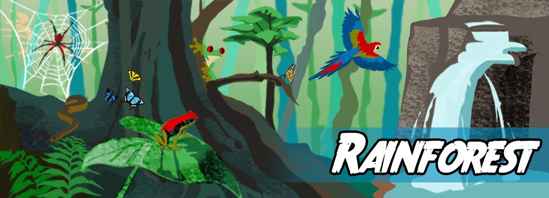 Rainforest activity